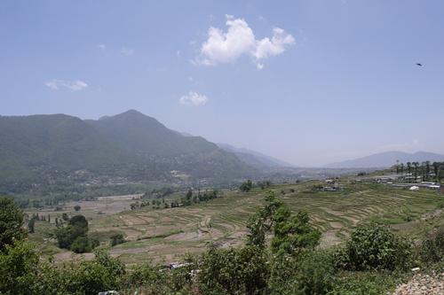 ネパール入りして2日後、糸紡ぎの村へ。田園風景を見ながら村に入りました。