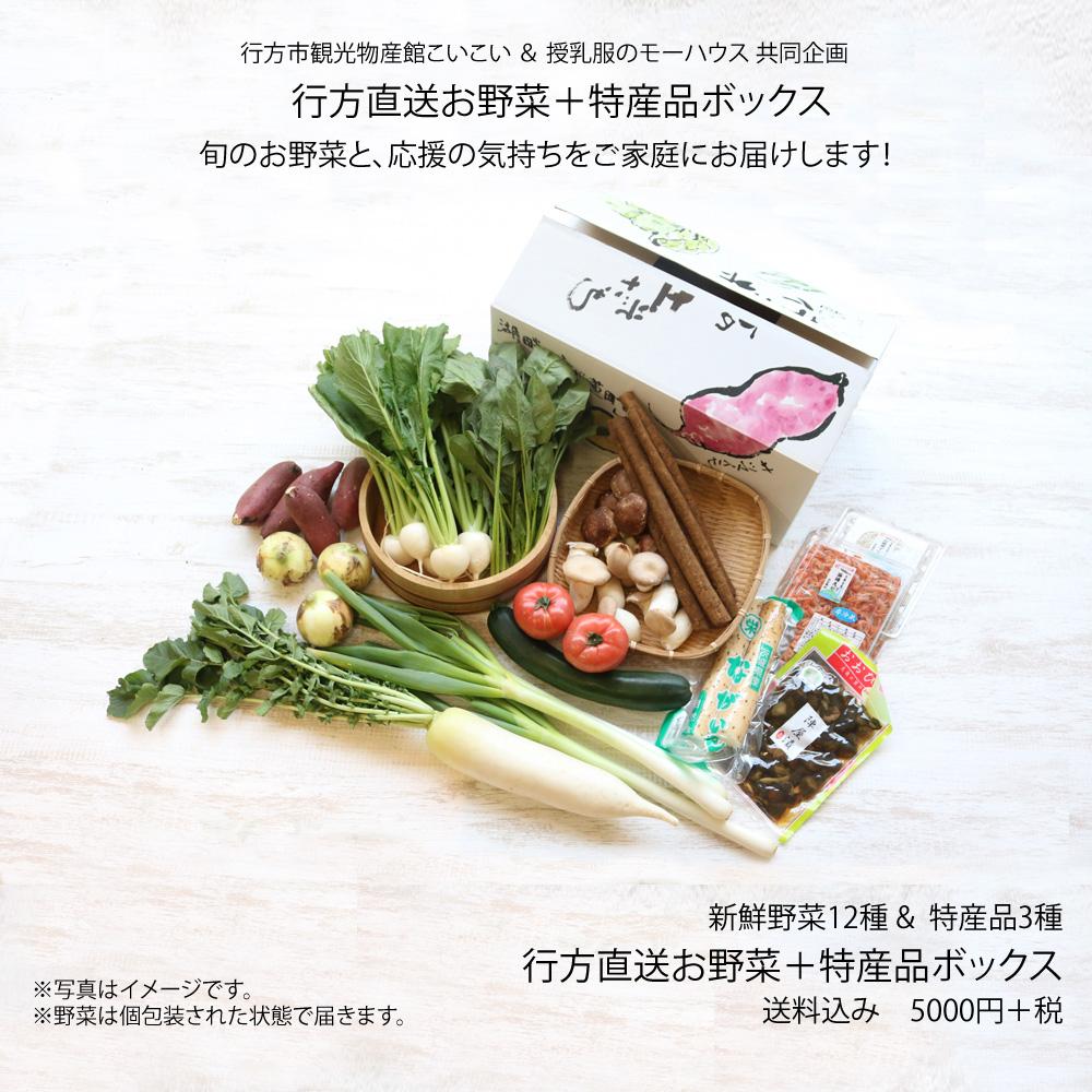 行方直送お野菜+特産品ボックス 野菜12種+特産品3種